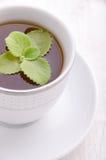 thé en bon état noir Le thé le plus de première qualité Photographie stock