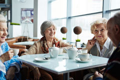 Thé en café Photographie stock