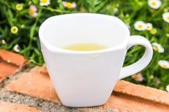 thé en verre de cuvette Photos libres de droits