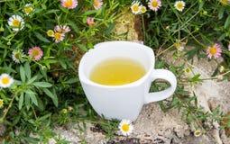 thé en verre de cuvette Images stock