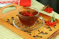 Thé et baies en verre de cuvette Photographie stock