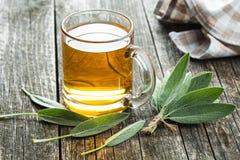 Thé et feuilles sages Photographie stock