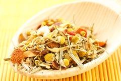 Thé et herbes de camomille assaisonnés Photo stock
