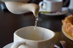 Thé et tasse photo libre de droits