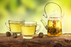Thé fleurissant dans une théière Images stock