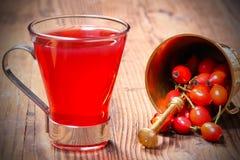 Thé frais de hanche rose photo stock