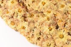 Thé jaune de fleur de chrysanthème Photos stock