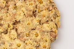 Thé jaune de fleur de chrysanthème Images libres de droits