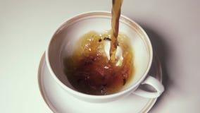 Thé lent de MOIS dans une tasse blanche avec des feuilles de thé clips vidéos
