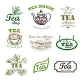 Thé Logo Set de croquis Images libres de droits