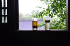 Thé longjing frais dans le châssis de fenêtre, à Hangzhou, la Chine, thé chinois en nature photographie stock