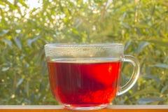 Thé noir dans la tasse en verre sur la fenêtre Images libres de droits