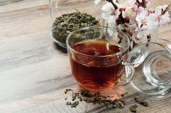 Thé noir dans une tasse Images stock