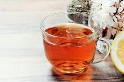 Thé noir dans une tasse Photo stock