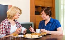 Thé plus âgé de boissons de deux amis avec le gâteau Image libre de droits