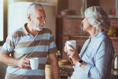 Thé potable de couples affectueux positifs dans la cuisine Photographie stock libre de droits