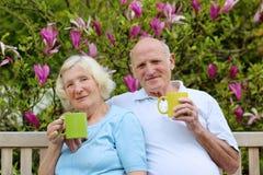 Thé potable de couples supérieurs affectueux dans le jardin Photo stock