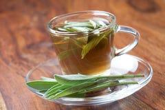 Thé sage avec la sauge fraîche à l'intérieur de la tasse de thé sur le plancher en bois Photos stock
