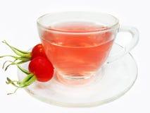 Thé sain de fruit avec le gratte-cul rose sauvage de baies Images libres de droits
