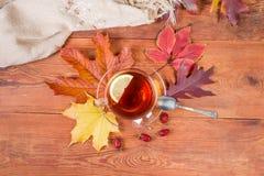 Thé sur la table en bois rustique avec les feuilles et l'écharpe d'automne photographie stock