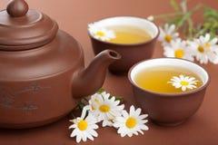 Thé vert avec des fleurs de camomille photographie stock libre de droits