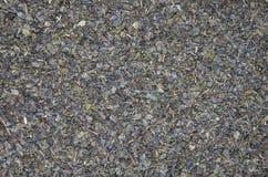Thé vert avec la texture en bon état Photographie stock libre de droits