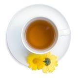 Thé vert dans une cuvette blanche Images stock