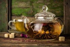 Thé vert de floraison dans la théière en verre Photographie stock libre de droits