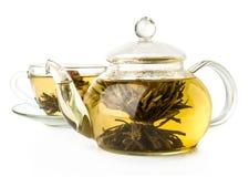 Thé vert de floraison dans la théière en verre Image stock