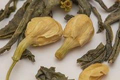 Thé vert de jasmin chinois Images libres de droits