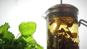 Théière en verre avec la fleur de floraison de thé à l'intérieur pour clips vidéos