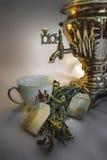 Théière russe avec la tasse et les sacs à thé Photographie stock libre de droits