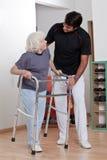 Thérapeute aidant le marcheur patient d'utilisation Images libres de droits