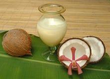 Thérapie alternative avec du lait de noix de coco Photos libres de droits