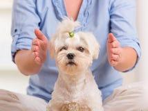 Thérapie de pratique de reiki de femme Photo stock