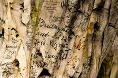 19th århundradegrafitti på grottaväggar Fotografering för Bildbyråer