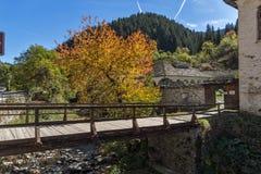 19th århundradekyrka av antagandet, floden och höstträdet i stad av Shiroka Laka, Bulgarien Royaltyfri Bild