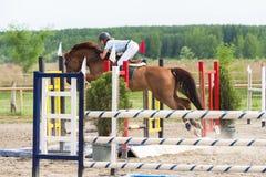 18th 2008 вызванная articolo1681 лошадь дома eventidellavita варианта comunedivigevano d comune конкуренции линия http HTML скача Стоковое Изображение