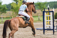 18th 2008 вызванная articolo1681 лошадь дома eventidellavita варианта comunedivigevano d comune конкуренции линия http HTML скача Стоковое Фото