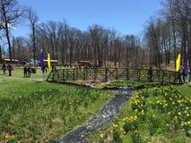37th ежегодный фестиваль Daffodil в Meriden, Коннектикуте стоковое изображение