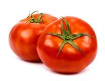 10th 2010 изолированных предпосылок может принятая фото белизна томатов 2 Стоковое Фото