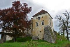 15th построенное svirzh Украина oblast lviv семьи столетия замока благородное первоначально было wirzski Стоковое Изображение RF