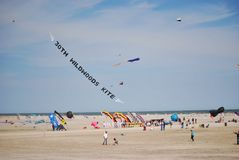 30th Annual kite show In wildwood Royalty Free Stock Image