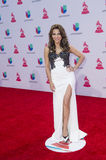 The 16th Annual Latin GRAMMY Awards. LAS VEGAS , NOV 19 : Entrepreneur Lili Gil Valletta attends the 16th Annual Latin GRAMMY Awards on November 19 2015 at the Royalty Free Stock Images