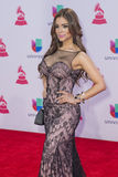 The 16th Annual Latin GRAMMY Awards Royalty Free Stock Photography
