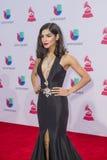 The 16th Annual Latin GRAMMY Awards. LAS VEGAS , NOV 19 : Model Alejandra Espinoza attends the 16th Annual Latin GRAMMY Awards on November 19 2015 at the MGM Royalty Free Stock Photography