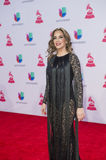 The 16th Annual Latin GRAMMY Awards. LAS VEGAS , NOV 19 : Singer Maria Toledo attends the 16th Annual Latin GRAMMY Awards on November 19 2015 at the MGM Grand Stock Photography
