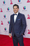 The 16th Annual Latin GRAMMY Awards. LAS VEGAS , NOV 19 : Singer Rey Ruiz attends the 16th Annual Latin GRAMMY Awards on November 19 2015 at the MGM Grand Arena Stock Image
