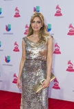 The 16th Annual Latin GRAMMY Awards Stock Image