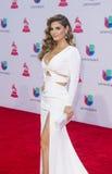 The 16th Annual Latin GRAMMY Awards. LAS VEGAS , NOV 19 : TV personality Chiquinquira Delgado attends the 16th Annual Latin GRAMMY Awards on November 19 2015 at Stock Images
